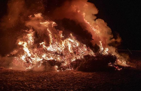 Wegen Corona: Feuerwehr Hagenburg/Altenhagen sagt Laternenumzug, Seniorennachmittag und Tannenbrand ab