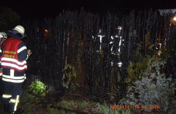 Thujahecken und Zaun in Flammen