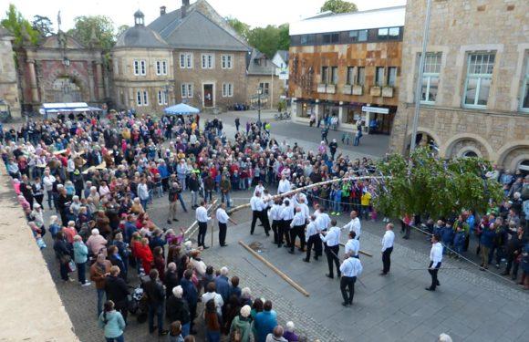 Bückeburg: Maibaum wird auf dem Marktplatz aufgestellt