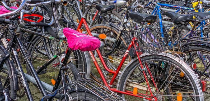 Bückeburg: Wird die Fürst-Ernst-Straße zur Fahrradstraße?