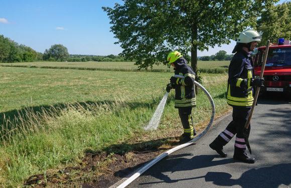 Feuerwehr löscht kleinen Flächenbrand