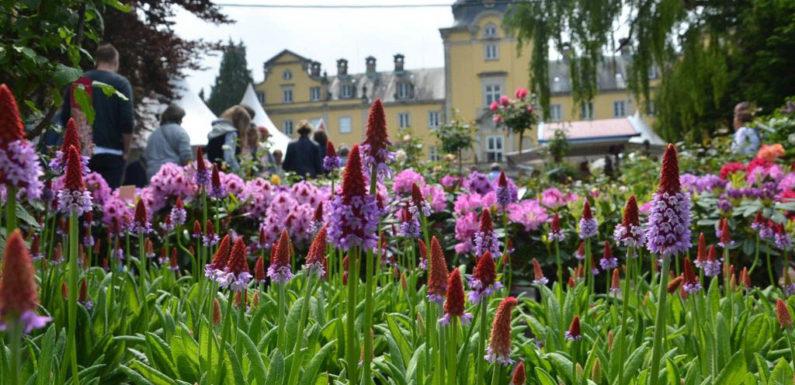 Landpartie feiert 20. Geburtstag: Mittsommer-Traum auf Schloss Bückeburg