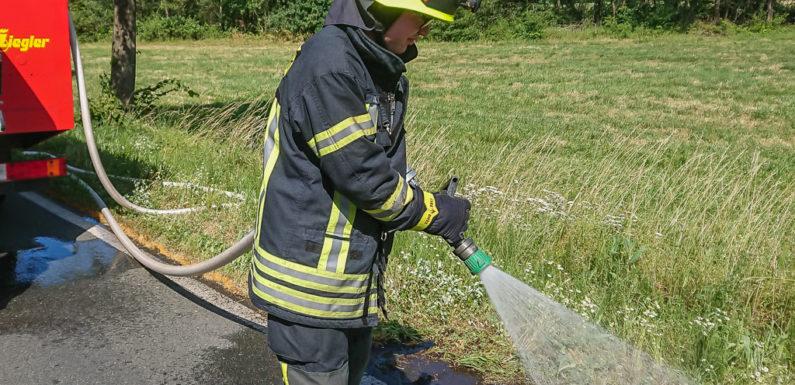 """Feuerwehr löscht Fläche am Kreisel """"Dreiländereck"""""""