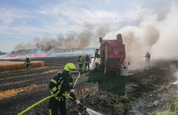 Feuer greift auf Wald über: 150 Feuerwehrleute im Großeinsatz in Sachsenhagen