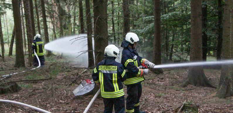 Kreisfeuerwehrbereitschaft Süd übt Waldbrandeinsatz