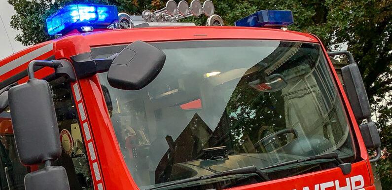 Obernkirchen: Unkrautentfernung sorgt für Feuerwehreinsatz