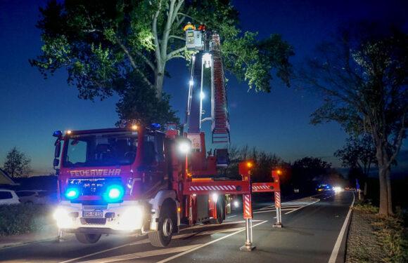 Windböen sorgen für Feuerwehreinsatz
