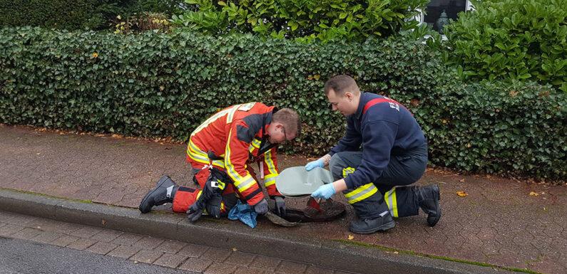 Bückeburger Feuerwehren überprüfen Hydranten im Stadtgebiet