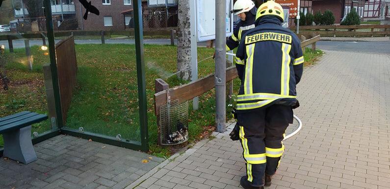 Brennender Mülleimer ruft Feuerwehr auf den Plan