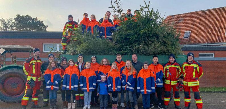 Bückeburger Jugendfeuerwehren sammeln über 2.000 Weihnachtsbäume ein