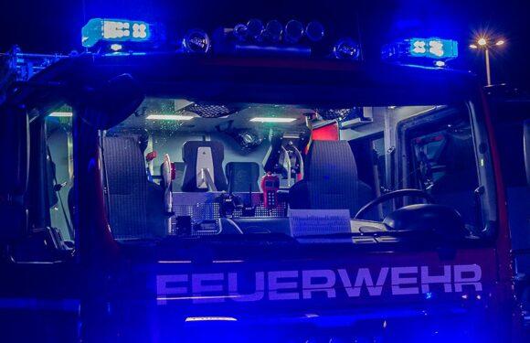 Feuerwehr löscht Einweggrill in Mülleimer