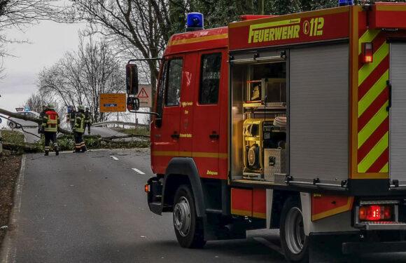 """Orkantief """"Sabine"""" sorgt für 27 Sturm-Einsätze der Polizei Bückeburg"""