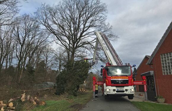 Sturmeinsatz für Feuerwehr in Wiedenbrügge