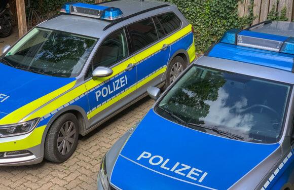 Rodenberg: Hoher Schaden am neuen Spielplatz am Burgwall