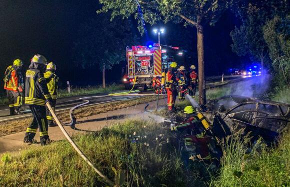 Autofahrer flüchtet in Bünde vor Polizei und prallt in Bückeburg gegen Baum