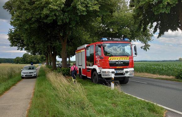 Kleine Grünfläche brennt an Bundesstraße 441 / Warnung der Feuerwehr