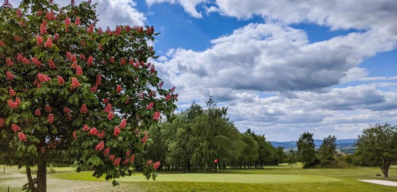 Obernkirchen: Jugendlicher auf Golfrasen unterwegs