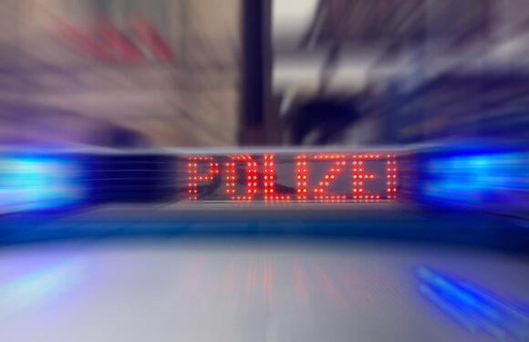 Haltezeichen ignoriert: Beifahrer beleidigt Polizisten auch bei Kontrolle