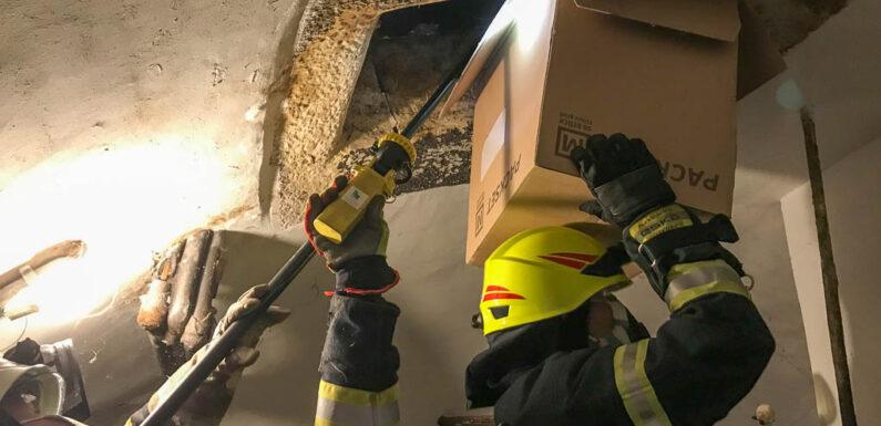 Feuerwehr rettet Waldkauz aus Schornstein