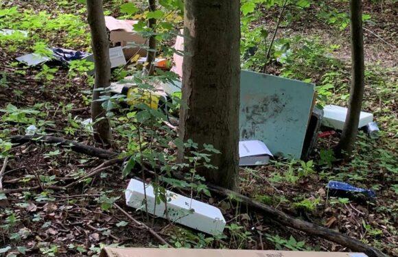 Illegale Müllentsorgung im Harrl: Polizei sucht Zeugen