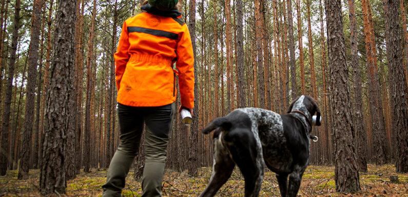 IG BAU fordert mehr Forstpersonal im Kreis Schaumburg