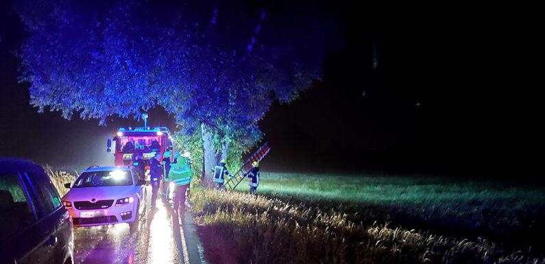 Feuerwehr rettet jugendliche Urlauberin aus Baum