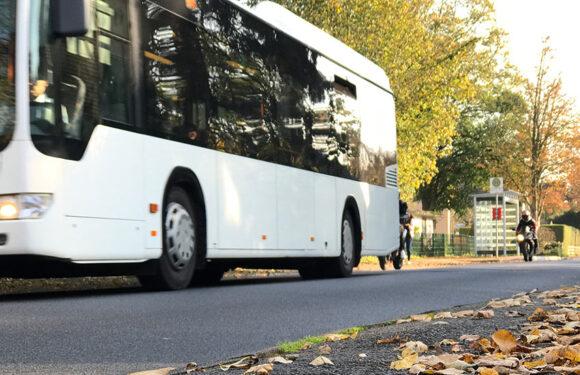 Ab 1. August: Neuer Tarif für Busverkehr im Landkreis Schaumburg