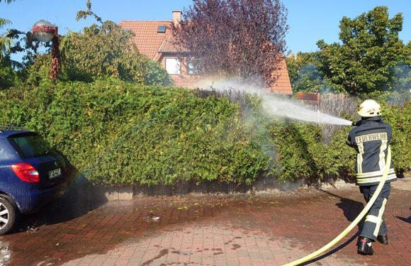 Hagenburg: Heckenbrand im Hopfengarten
