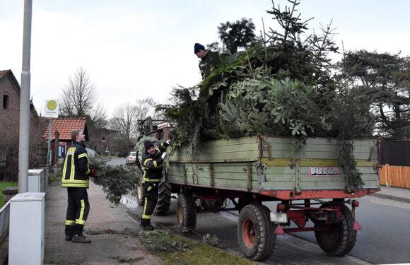 Bückeburg: Ortsfeuerwehren sammeln Tannenbäume ein