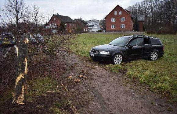 Probsthagen: Passat prallt gegen Baum
