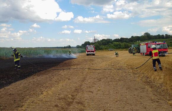 Brand auf Stoppelfeld in der Feldmark bei Altenhagen