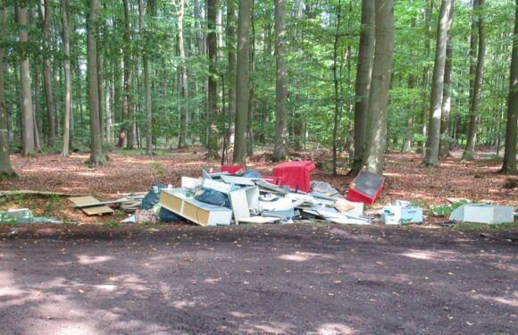 Hagenburg: Illegal Sperrmüll im Wald entsorgt