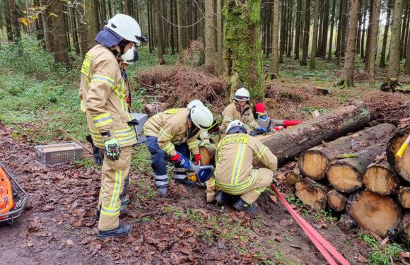 Übung der Feuerwehr: Brand im Wald zieht Großeinsatz nach sich