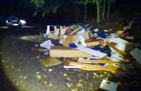 Müllentsorgung im Harrl: Sperrmüll in den Wald gekippt